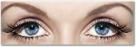 Texas Eyelash Extention Specialist Continuing Education Course for license renewal